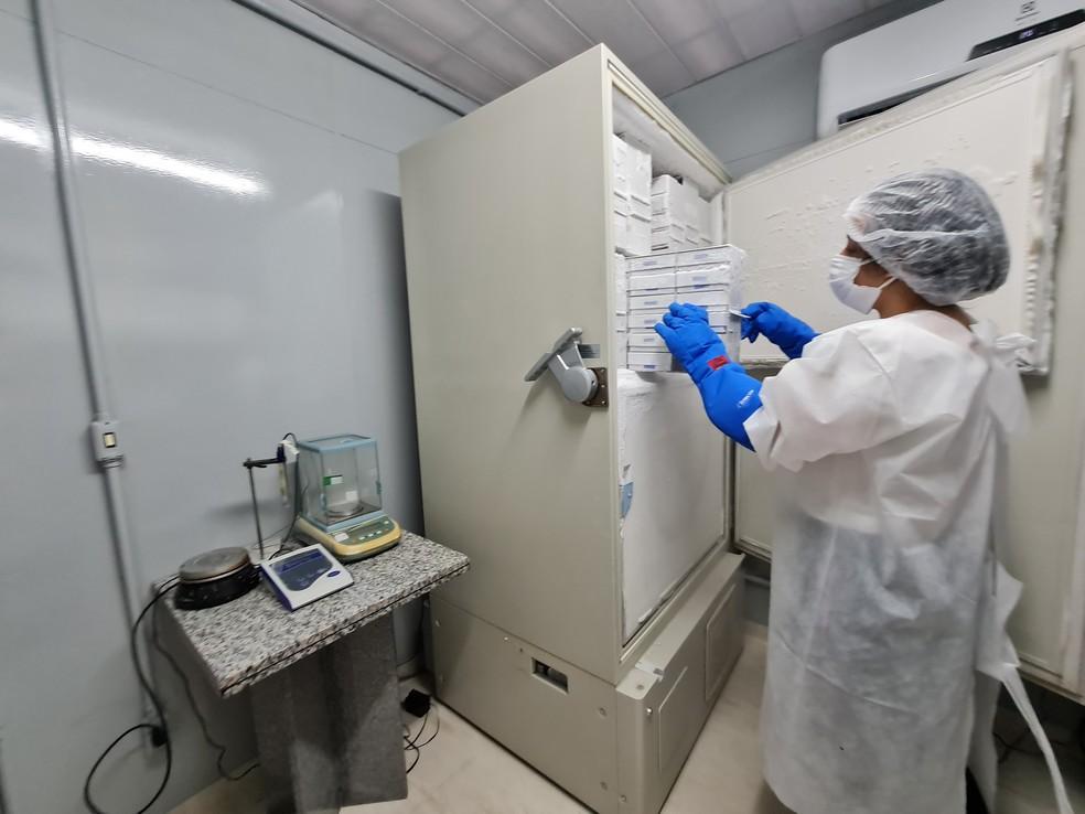 Universidade Federal de Pernambuco disponibiliza ultrafreezers e câmaras frias para armazenamento de um milhão de vacinas contra a Covid-19 — Foto: UFPE/Divulgação