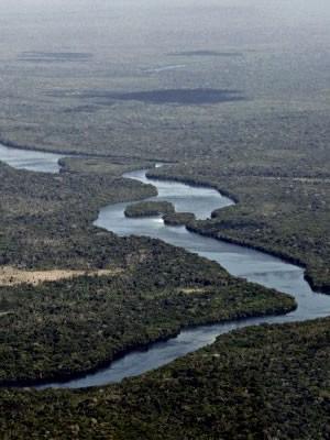 Área onde está terra Menkü em Mato Grosso (Foto: Leandro J.Nascimento/G1)
