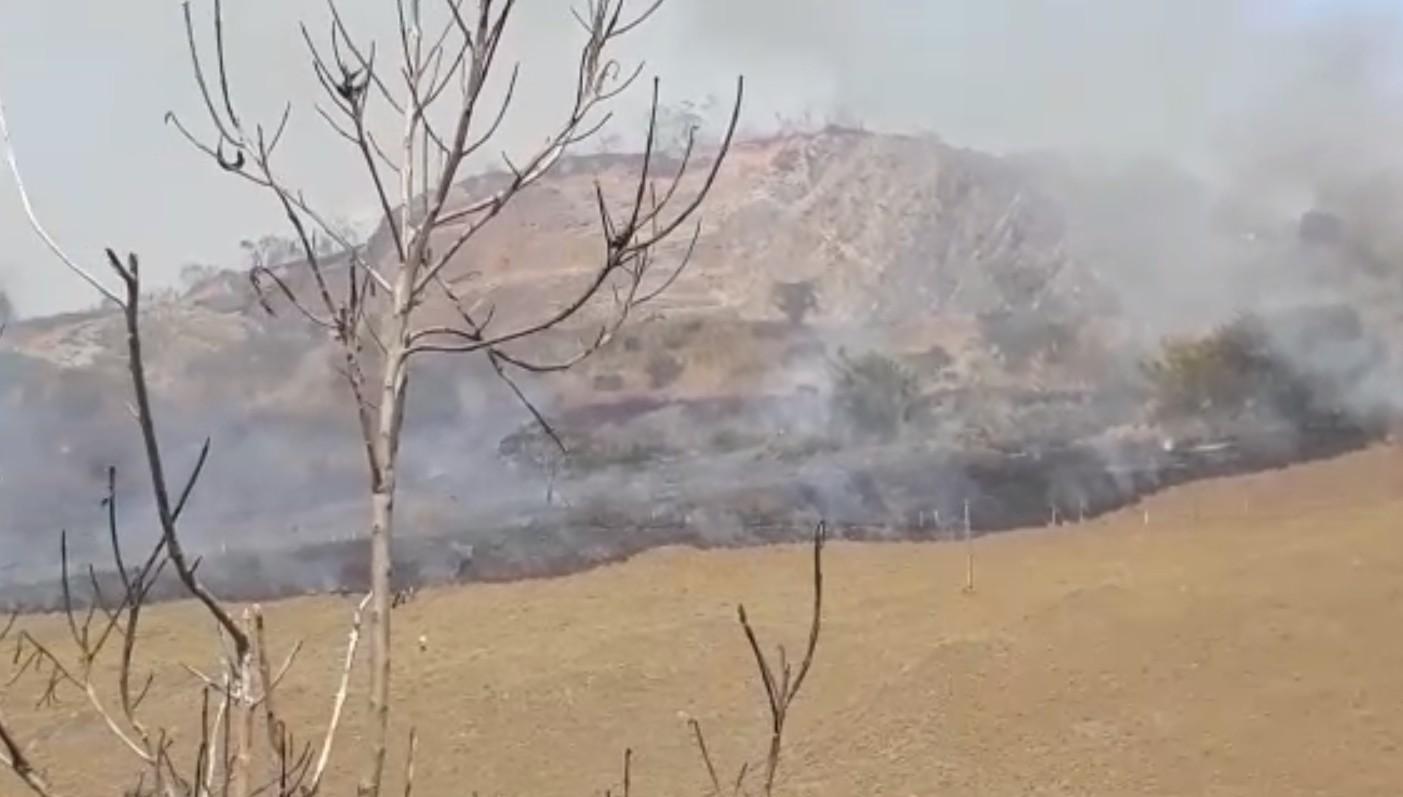 Fogo destrói área de vegetação equivalente a 13 campos de futebol no Noroeste Fluminense - Notícias - Plantão Diário