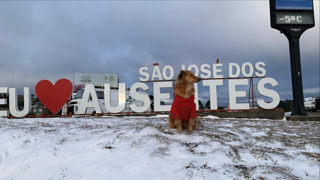 Cenas da neve no RS: moradores assam churrasco e andam de snowboard; Vídeos
