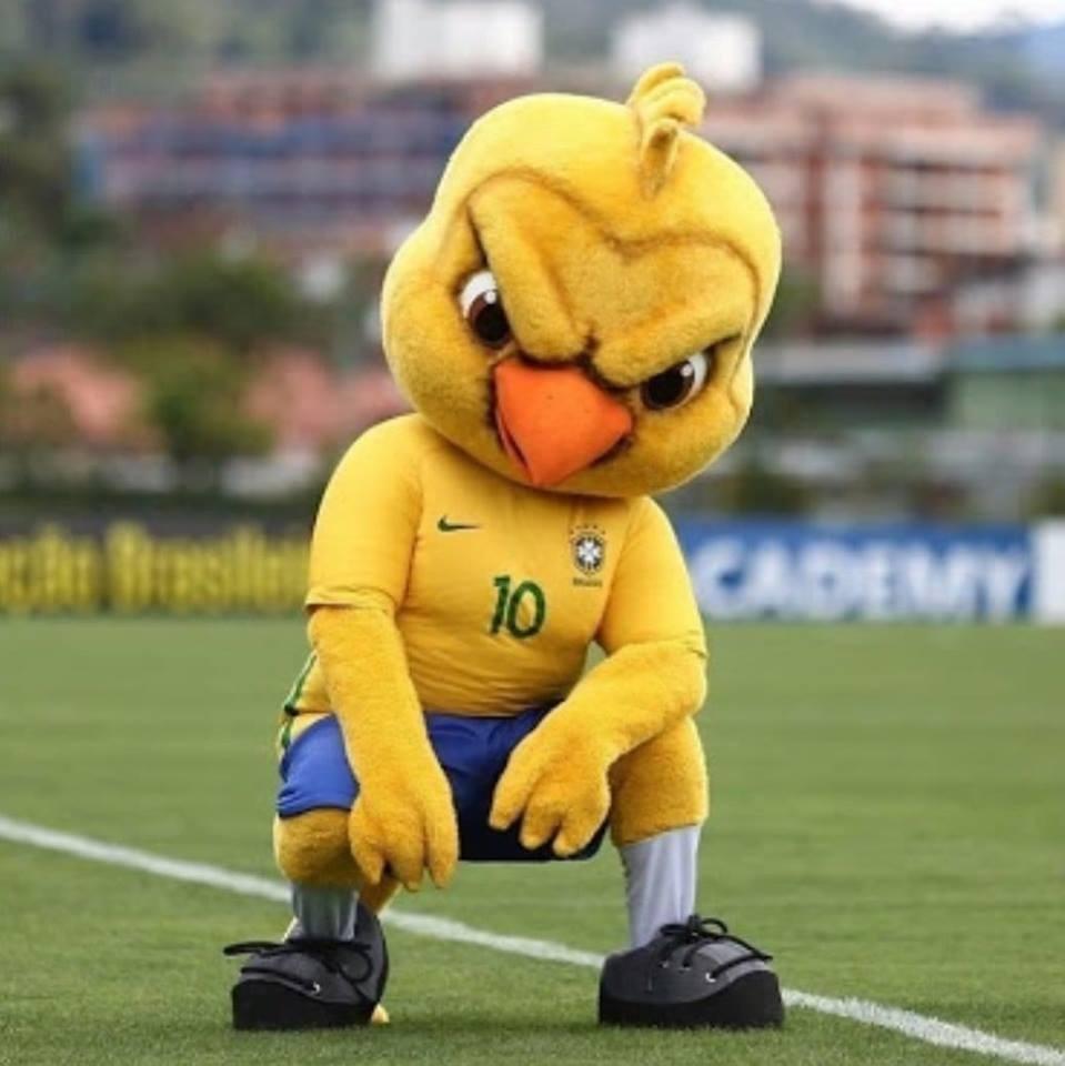 Canarinho Pistola virou sensação na internet (Foto: Divulgação)
