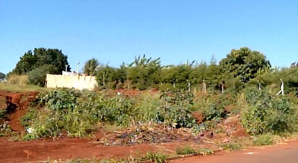 Residência assaltada fica no Bairro da Estação, em Santa Cruz do Rio Pardo (Foto: Reprodução / TV TEM)