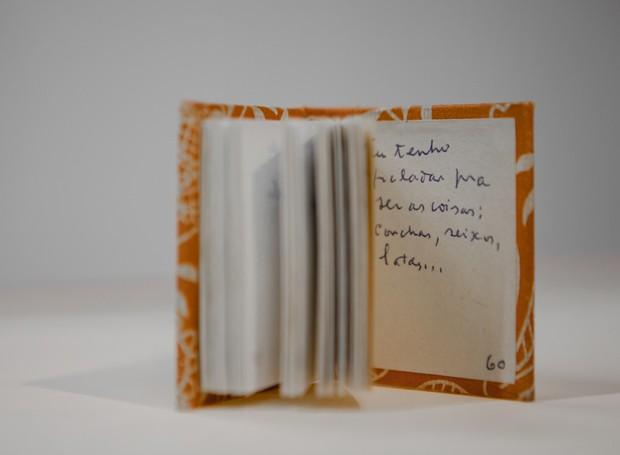 Um dos caderninhos de Manoel de Barros, intitulado Dicionário de Passarinhos (Foto: Divulgação)