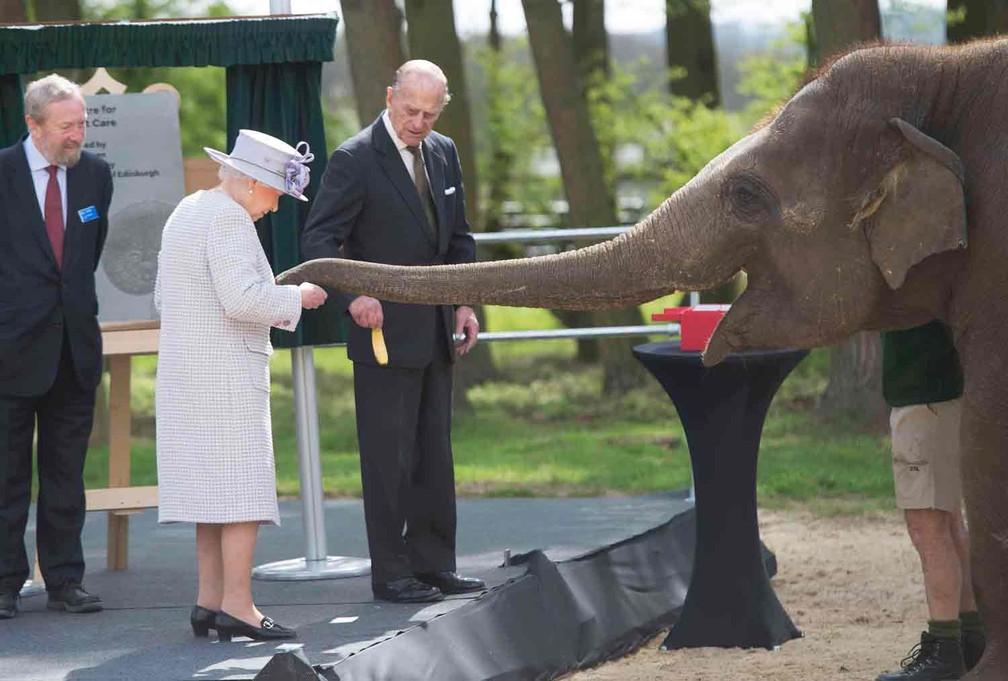 A rainha Elizabeth e o príncipe Philip alimentam elefante durante visita ao zoológico de Londres  — Foto: Davis Rose/Reuters