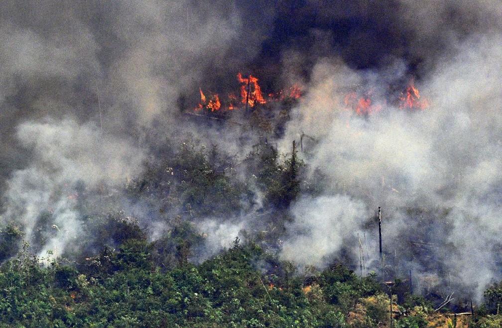Resultado de imagem para Retrospectiva 2019 | As queimadas na Amazônia