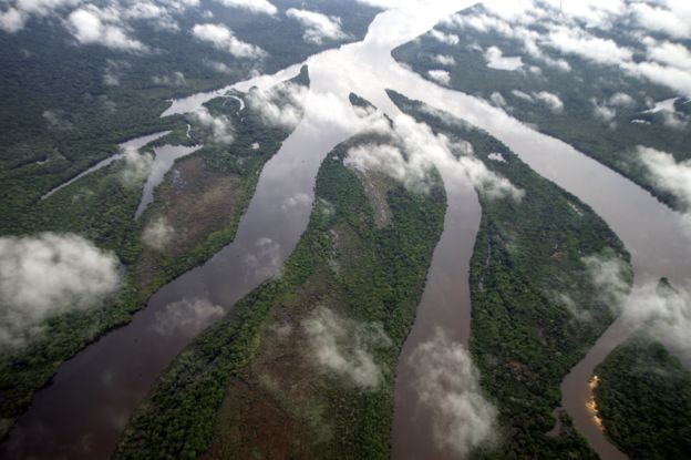 O Território Indígena do Xingu abriga algumas das áreas mais preservadas da bacia (Foto: Funai)