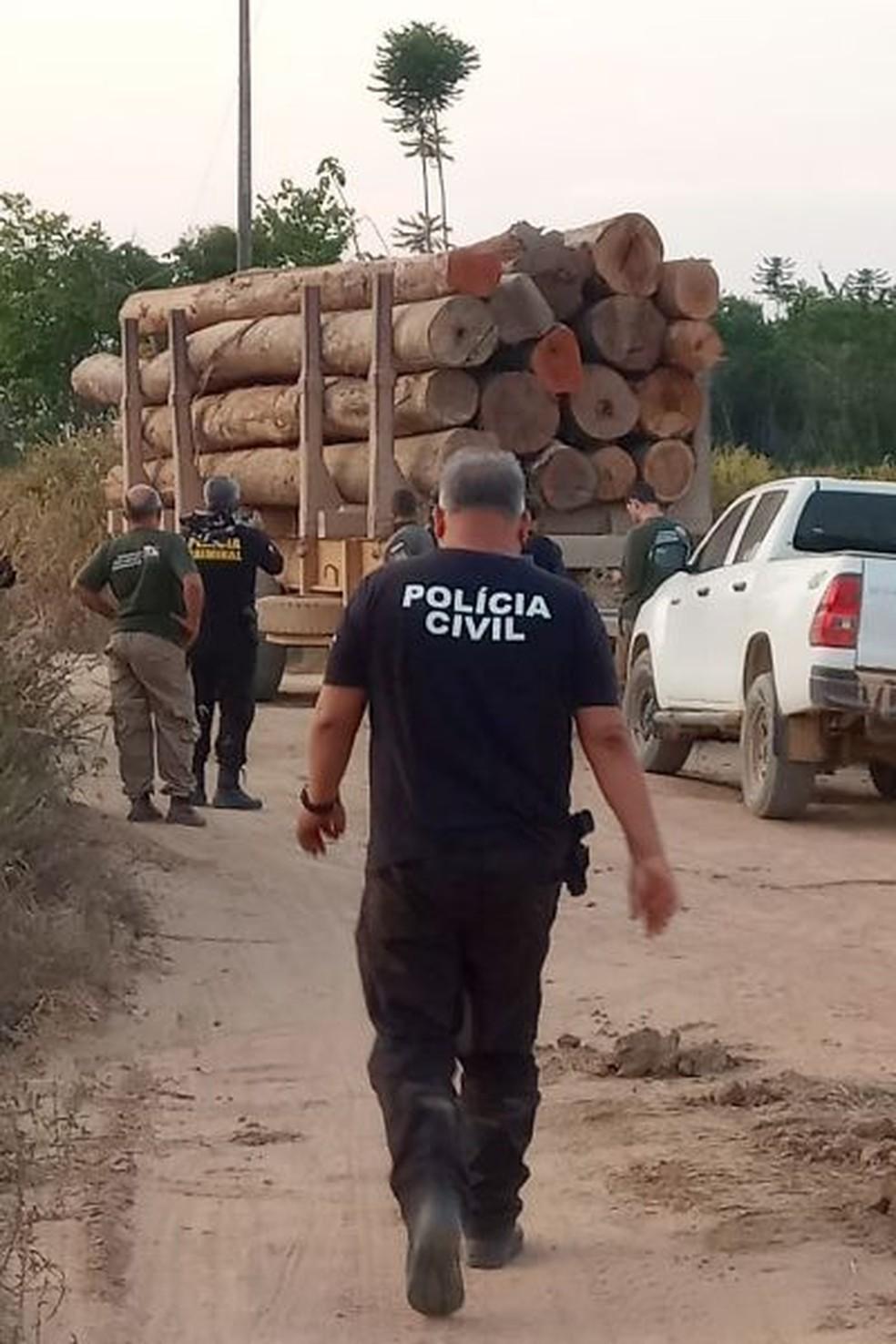 Quase mil metros cúbicos de madeira foram apreendidos, assim como 37 motosserras, 26 armas de fogo e 14 veículos — Foto: Secretaria de Estado de Meio Ambiente e Sustentabilidade do Pará (Semas)