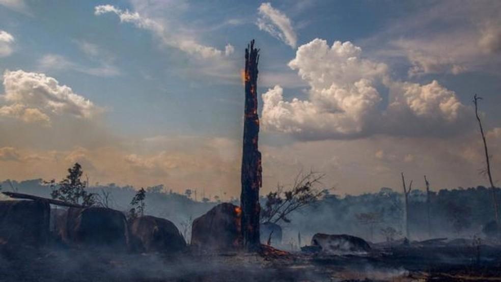 Houve mais de 70 mil incêndios florestais na Amazônia brasileira em 2019 — Foto: Getty Images/BBC