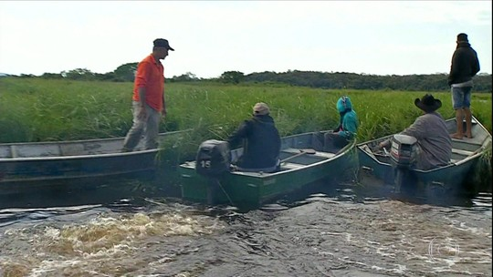 No Pantanal, plantas flutuantes prejudicam o trânsito de barcos e moradores