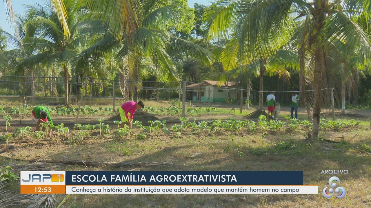 Conheça a história da Escola Família Agroextrativista que educa através do homem no campo