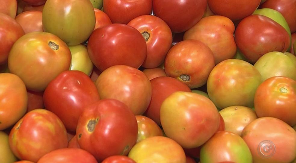Tomate ficou quase 20% mais caro em janeiro. (Foto: Divulgação)