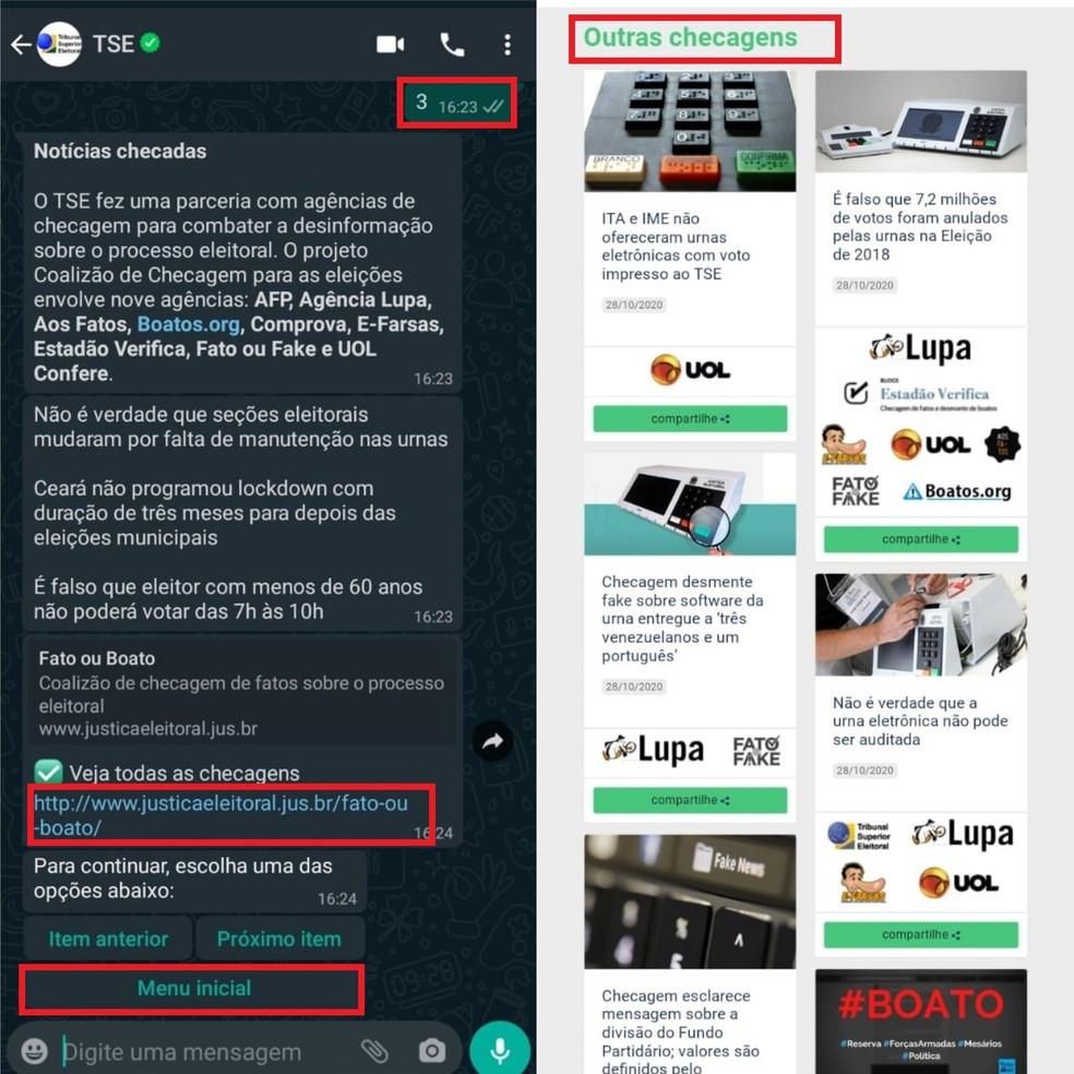 """Verifique fake news pela ferramenta enviando """"3"""" na conversa — Foto: Reprodução/Clara Fabro"""
