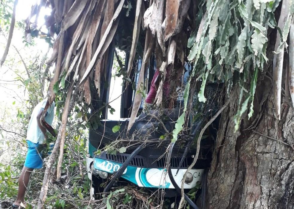 Segundo 16º  Grupamento de Bombeiros Militares (BPM), acidente ocorreu na altura do  povoado de Riacho da Lama. — Foto: Blog Voz da Bahia