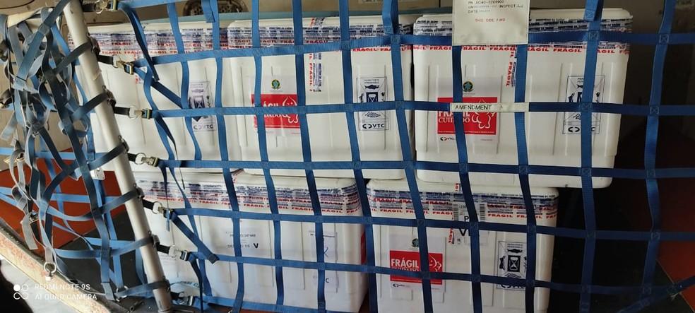 ES recebeu mais doses de vacinas contra a Covid-19 nesta quinta-feira (8) — Foto: Divulgação/LATAM