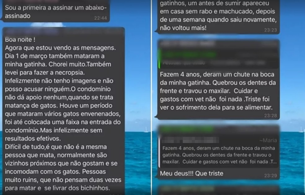 Mensagens enviadas denunciam outros casos de maus-tratos  — Foto: Arquivo Pessoal