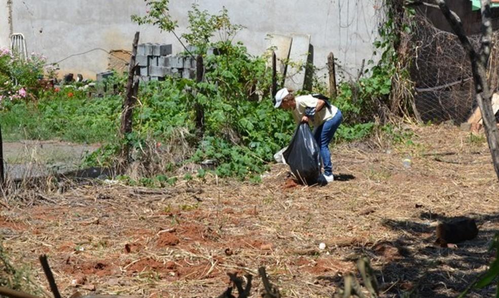 Mutirões de limpeza são realizados em Arcos para combater o Aedes aegypti — Foto: Divulgação/Prefeitura de Arcos