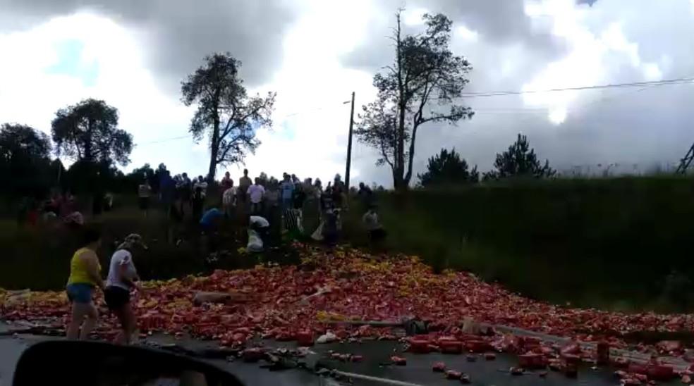 O acidente aconteceu na BR-277, em Palmeira, neste sábado (Foto: Reprodução/RPC)