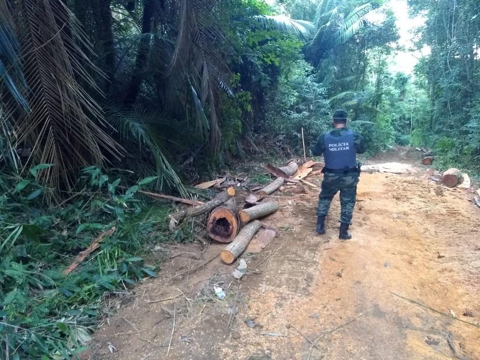 Área desmatada flagrada pela Polícia Militar Ambiental em Nova Venécia, no Norte do ES, em julho de 2020 — Foto: Divulgação/Sesp
