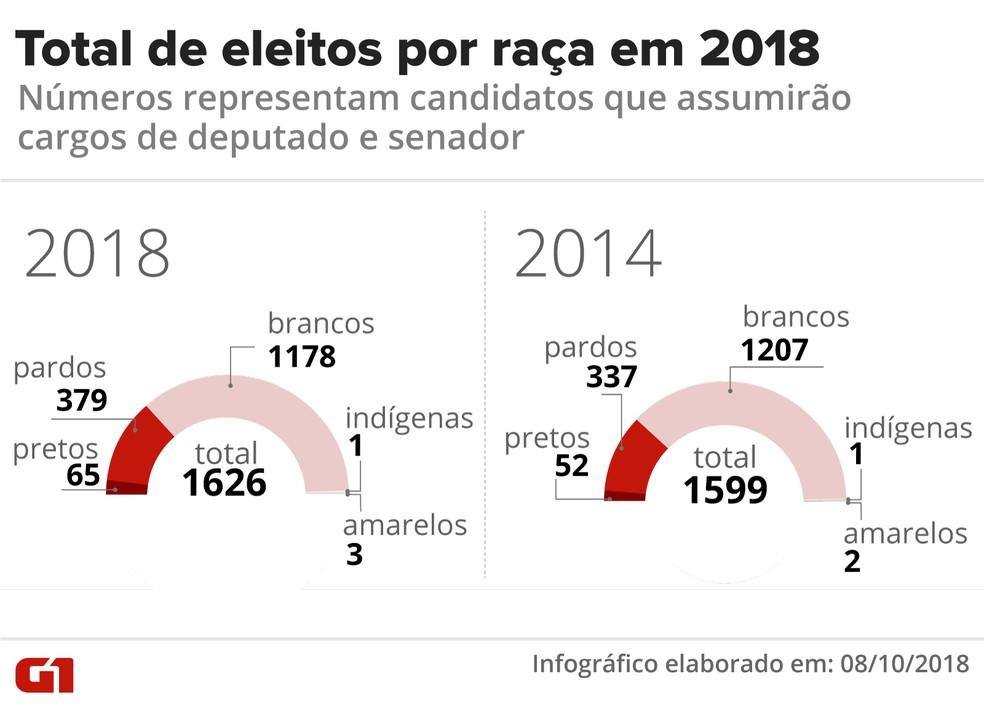 Total de eleitos por raça em 2018 — Foto: Karina Almeida/G1