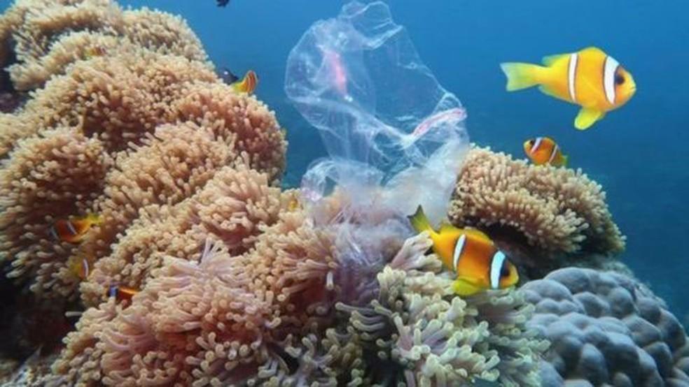 Pesquisas estimam que de 5 a 12 milhões de toneladas métricas de resíduos plásticos chegam ao mar a cada ano  — Foto: Getty Images/ BBC