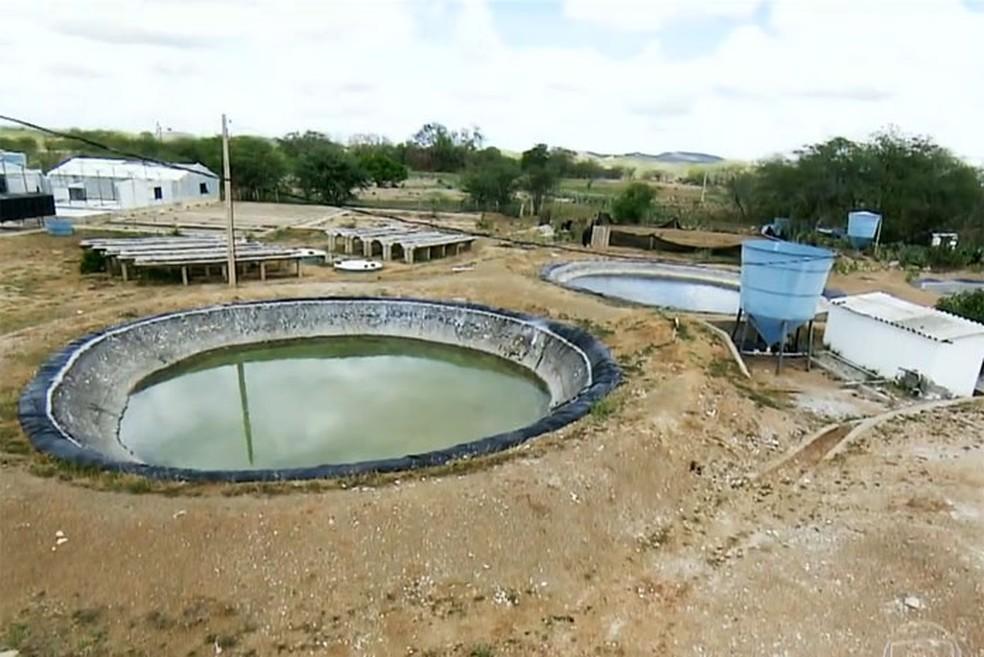 No Nordeste brasileiro existem cerca de 3,5 mil pequenas unidades de dessalinização em poços de água salobra — Foto: Reprodução TV Globo