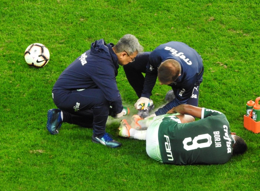 Borja em Palmeiras x Godoy Cruz  — Foto: Felipe Zito