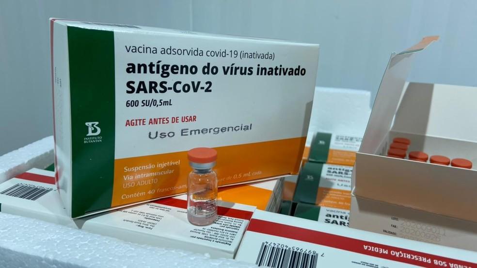 Vacina CoronaVac chegou na Paraíba nesta segunda-feira (18) — Foto: SES-PB/Divulgação