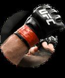 Assista ao melhor do MMA ao vivo pela internet.