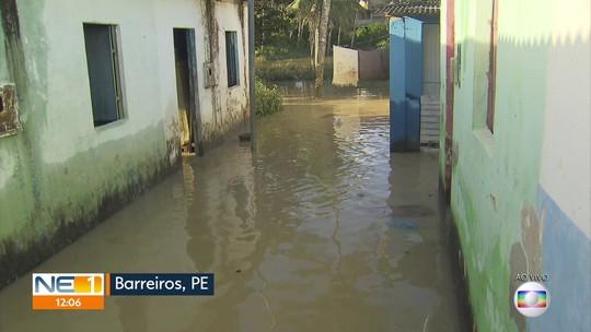 Famílias retornam a casas inundadas após chuva em Barreiros