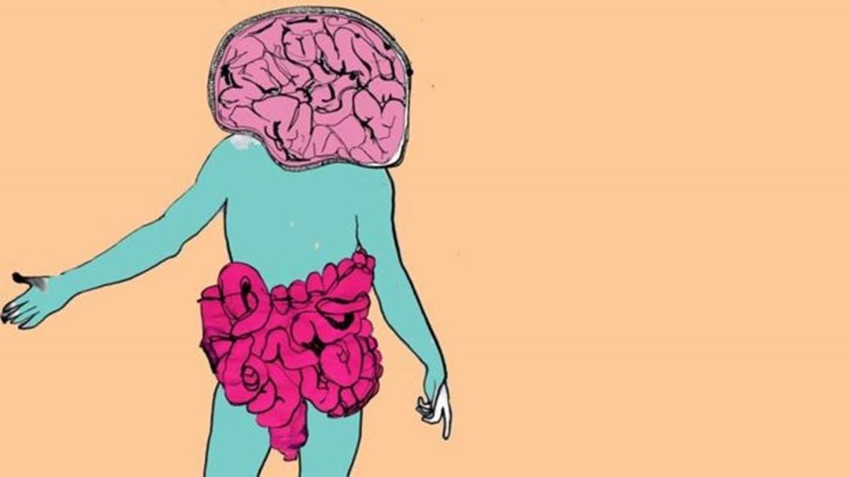 A maior parte do seu corpo não é humana - e é nova aposta de cientistas para vencer doenças