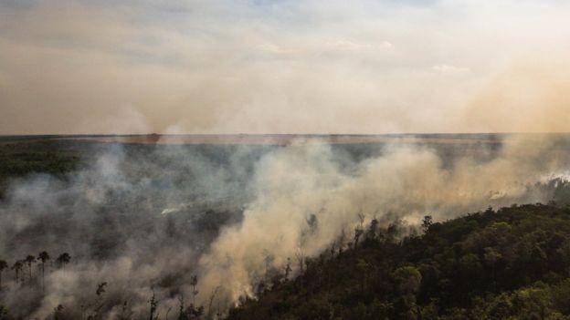 """""""Queremos que a União Europeia pare de 'importar o desmatamento' e se torne um líder mundial em comércio sustentável"""", defende bióloga Laura Kehoe (Foto: THIAGO FORESTI, via BBC News Brasil)"""