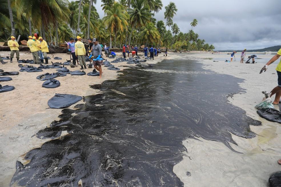 Funcionários da Prefeitura de Tamandaré, no estado de Pernambuco, trabalham na retirada de óleo da praia dos Carneiros, nesta sexta-feira (18). — Foto: BRUNO CAMPOS/JC IMAGEM/ESTADÃO CONTEÚDO