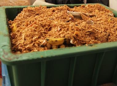compostagem-composteira-domestica (Foto: Cristal Muniz)