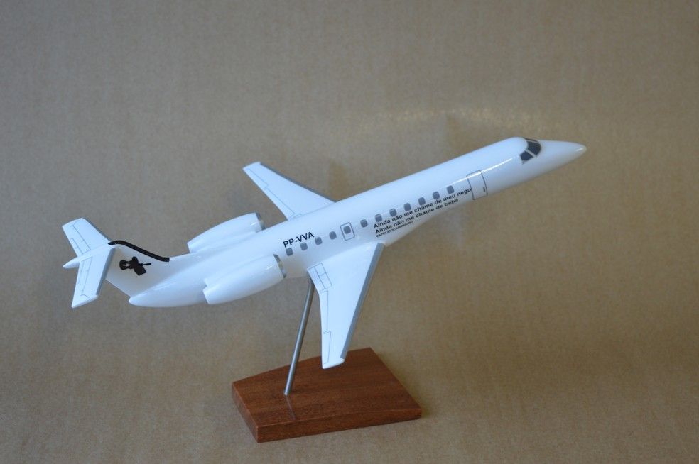 Miniatura de avião feito para fã do cantor Gusttavo Lima (Foto: Camilla Motta/G1)
