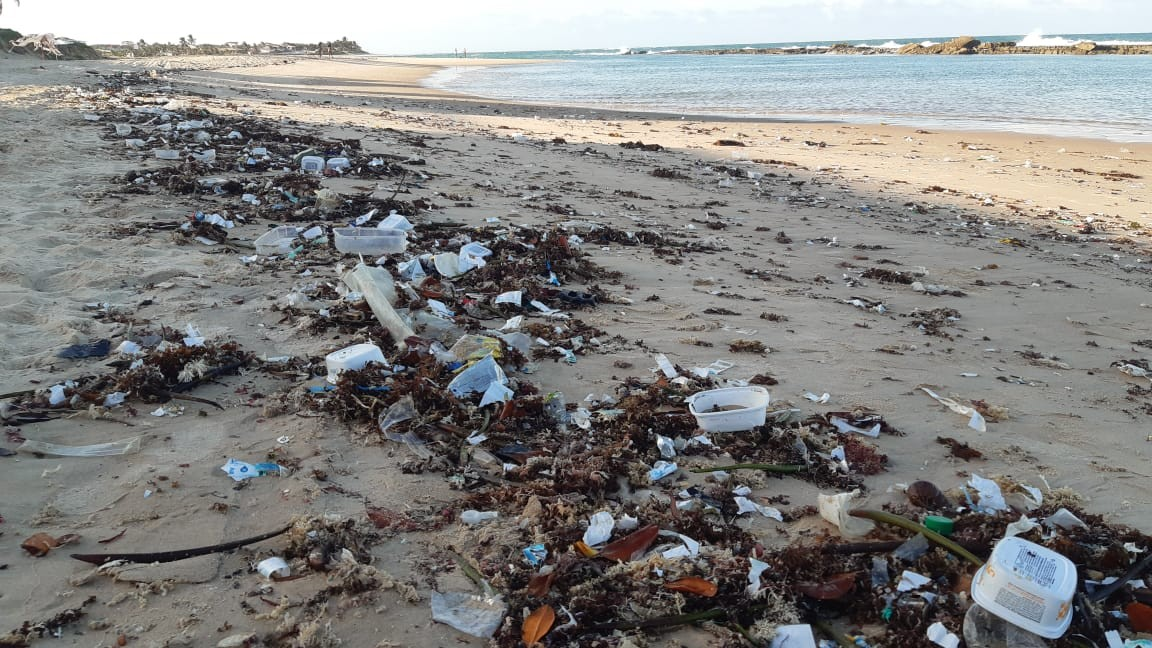 RN recolheu quase 50 toneladas de lixo em praias de 7 municípios, diz relatório do Idema