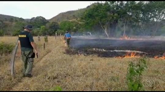 Fiscais do Ibama flagram produtor rural colocando fogo em fazenda na Chapada dos Veadeiros; vídeo