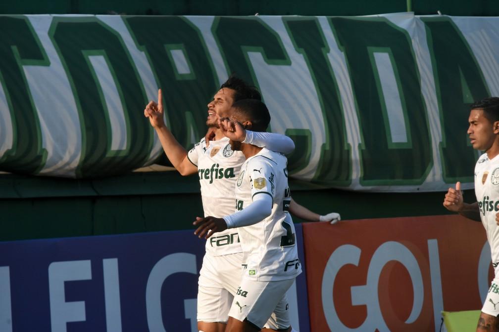 Atuações do Palmeiras: veja as notas dos jogadores no jogo contra a Chape