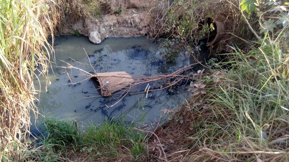 Esgoto jogado no Rio Pirarara em Cacoal, em Rondônia; na região Norte, apenas 12% da população tem seu esgoto dirigido a estações de tratamento (Foto: Rogério Aderbal/G1)