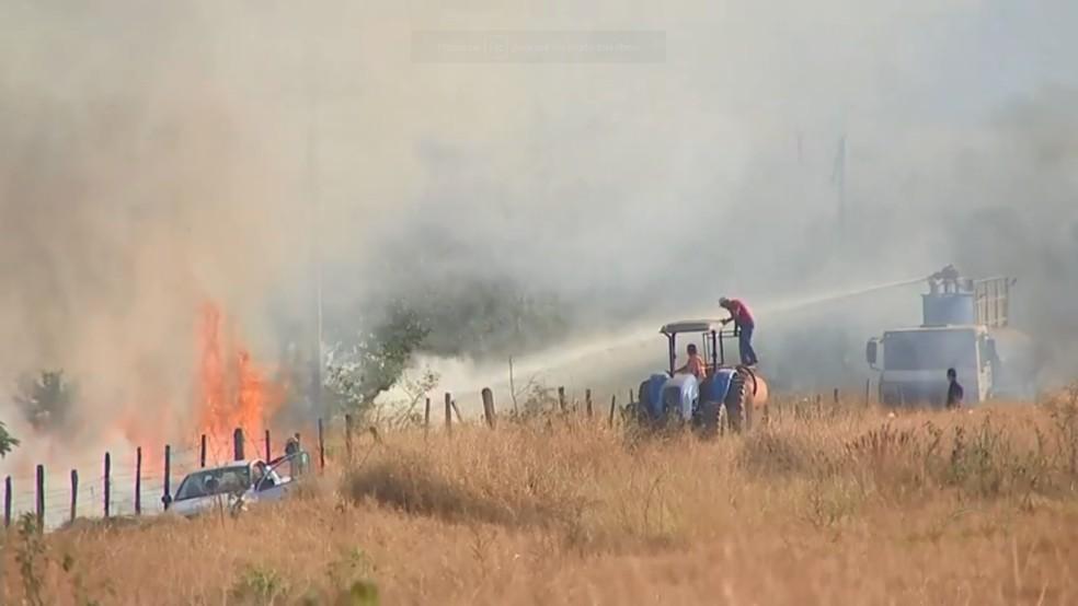 Voluntários tentam apagar as chamas na área verde em Rio Preto (Foto: Reprodução/TV TEM)