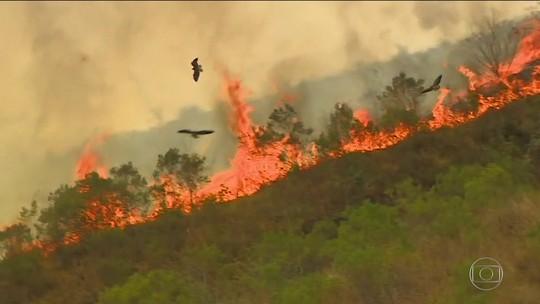 Após uma semana de combate, fogo é controlado na serra da Bocaina (SP)