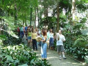 Passeio de conexão com a natureza no Parque Trianon (Foto: Divulgação / Parque Trianon)