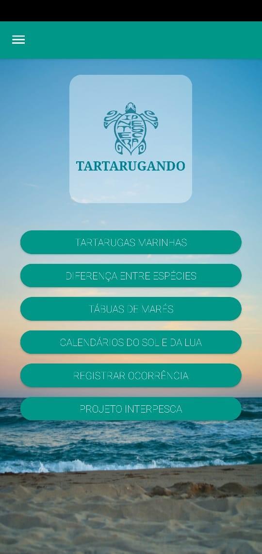 Aplicativo é criado para que população ajude a registrar casos de tartarugas encalhadas no Ceará
