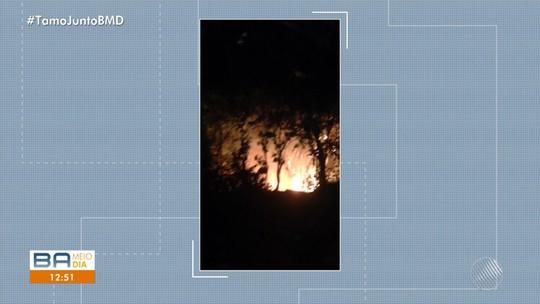 Terreno ao lado de terreiro Ilê Apô Afonjá é alvo de incêndio e assusta filhos de santo