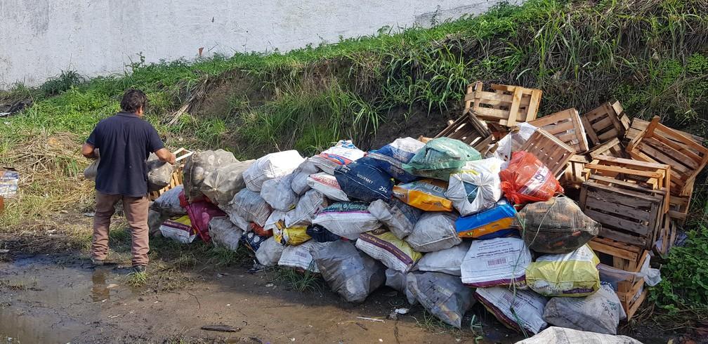 Catador de material reciclável separa os itens e guarda em terreno cedido por amigo em São Pedro da Aldeia, no RJ — Foto: Rodrigo Marinho/G1