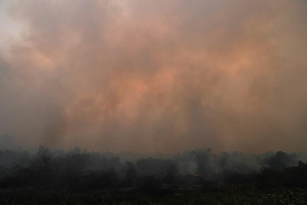 Fumaça sobe de incêndio no Pantanal em Poconé, Mato Grosso, no dia 27 de agosto. — Foto: Amanda Perobelli/Reuters