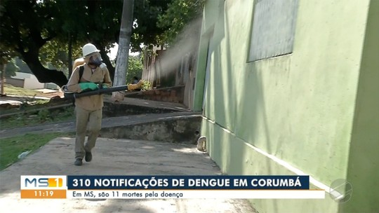 Corumbá registra 310 casos suspeito de dengue e autoridades falam em possível epidemia