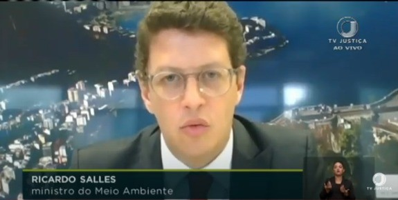 Ricardo Salles, ministro do Meio Ambiente (Foto: Reprodução)