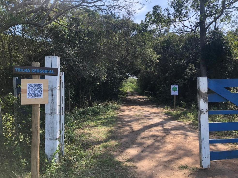 Trilha Sensorial pode ser acessada gratuitamente por pessoas de qualquer idade em Cabo Frio, na Região dos Lagos do Rio — Foto: Isadora Aires/G1