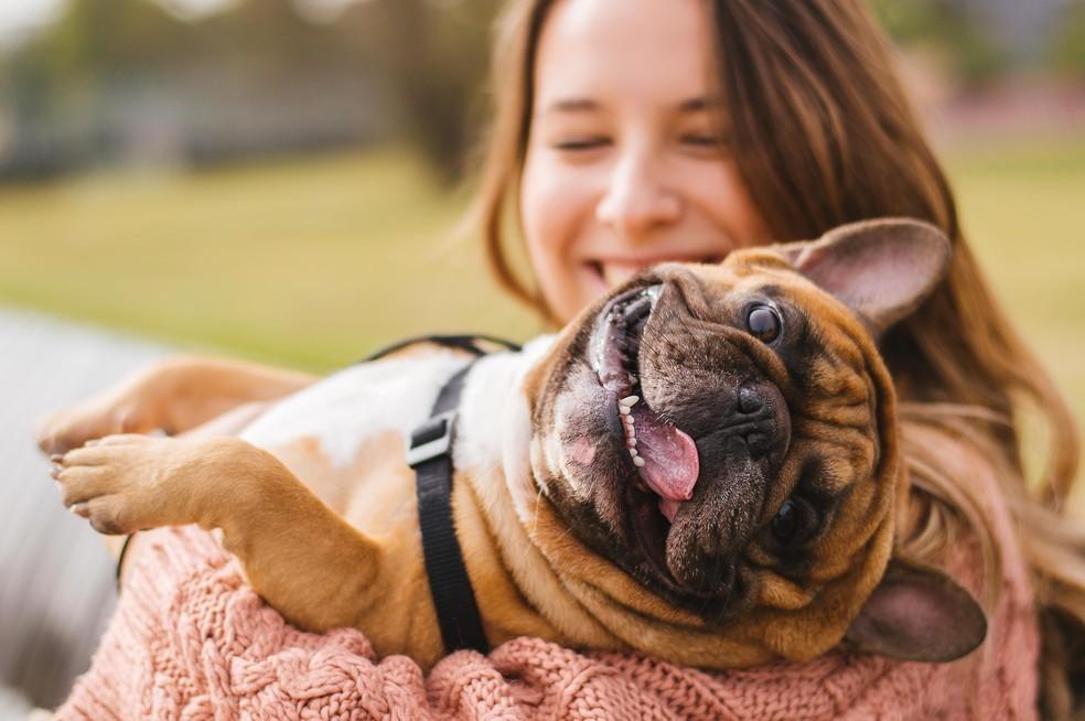 Donos de cachorros possuem altos níveis de ocitocina, responsável pela sensação de prazer e alegria — Foto: Shutterstock