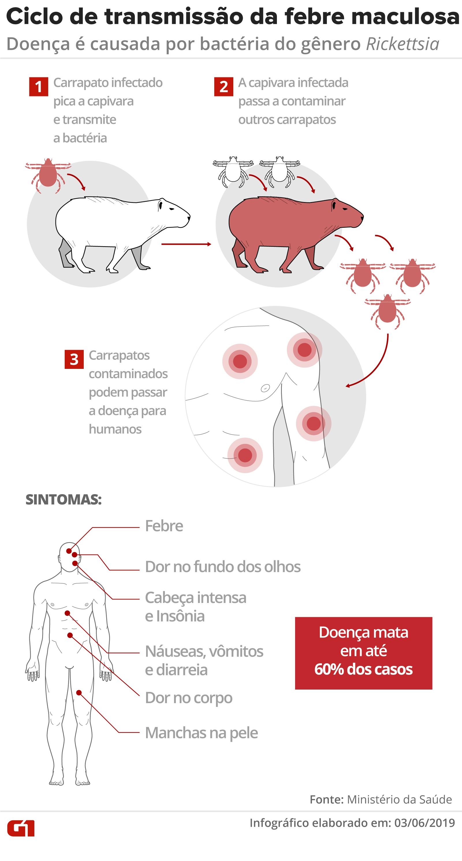 Saúde investiga morte suspeita por febre maculosa em  São João da Barra, RJ, após Campos confirmar caso em criança